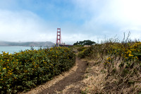 Nikon D800 Images of Pathway to Golden Gate Bridge_5382