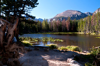 Nymph_Lake_Colorado_Rocky_Mountain_National_Park (2 of 4)