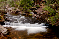 Glen_Leigh_Trail _CDS5022 Ricketts_Glen_State_Park