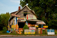 House in Heidelberg Project-  5564