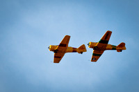AT-6 SNJ Texan In Flight Formation Navy and Marine_CDS1173